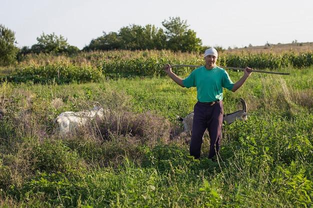 Landwirt, der kamera beim aufpassen von ziegen betrachtet