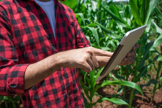 Landwirt mit digitalem tablet-computer