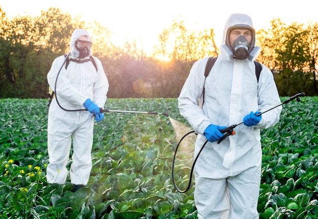 Landwirt sprüht pestizid feldmaske ernte schutzchemikalie