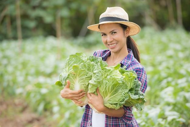 Landwirte arbeiten in chinakohlfarm