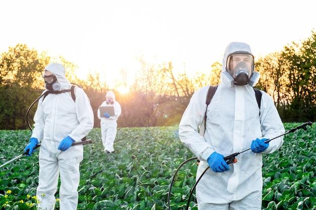 Landwirte, die pestizid-feldmaske sprühen, ernten schützende chemikalie