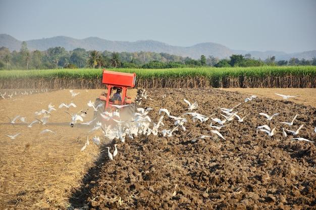 Landwirte fahren den traktor, um den boden zu kultivieren