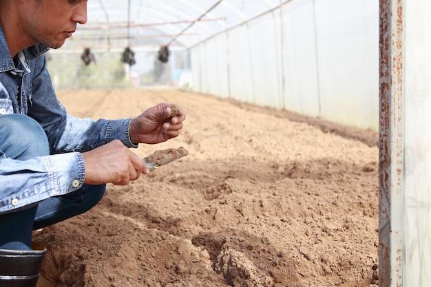 Landwirte überprüfen den boden und planen, sich vor dem pflanzen zu verbessern