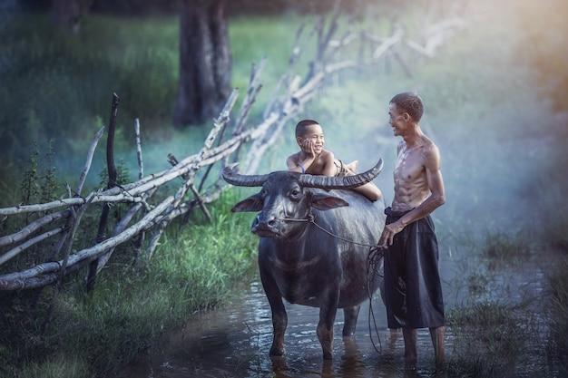 Landwirtfamilie, -vater und -sohn mit einem büffel diese thailändischen leute des lebensstils in der landschaft thailand.