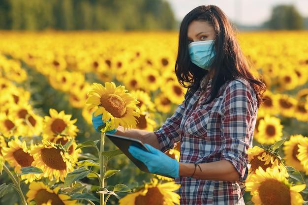Landwirtin agronomin in handschuhen und gesichtsmaske auf dem sonnenblumenfeld mit tablette, die die ernte überprüft.