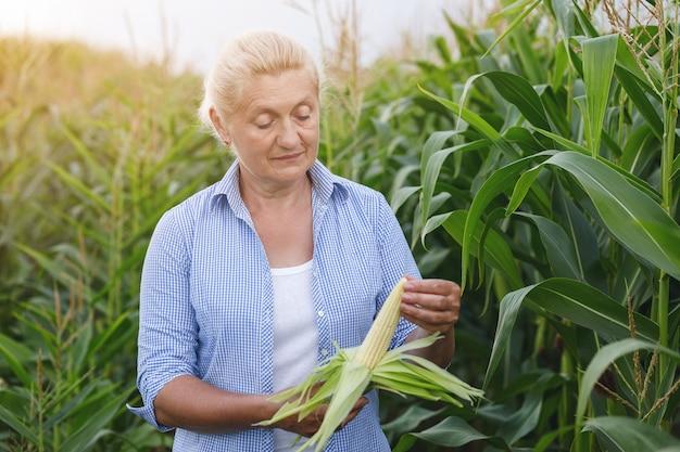 Landwirtin im feld, die maispflanzen während eines sonnigen sommertages prüft