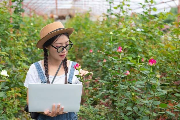 Landwirtschaftliche frau, die eine tablette im rosengarten hält.