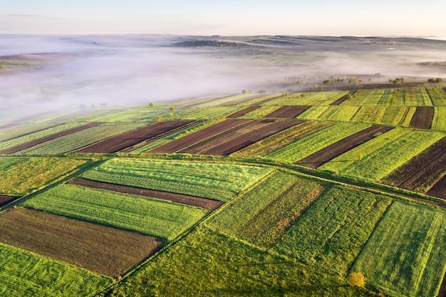 Landwirtschaftliche landschaft von der luft an der sonnigen frühlingsdämmerung.