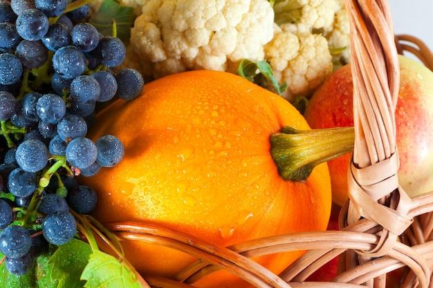 Landwirtschaftliche produkte in einem korb. gemüse und obst aus dem garten ernten