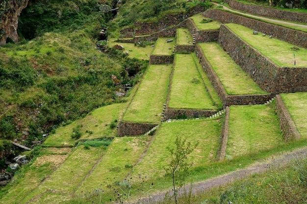 Landwirtschaftliche terrassenruinen des alten inkas an archäologischer fundstätte pisac im heiligen tal von cusco-region, peru