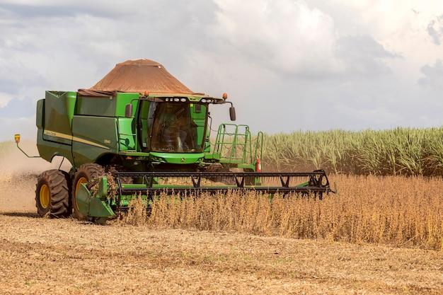 Landwirtschaftlicher traktor, der sojabohnen auf dem feld erntet