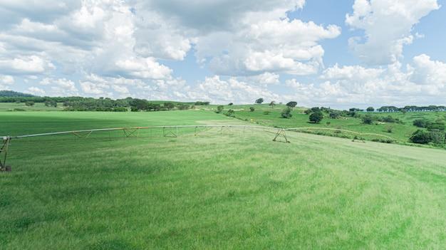Landwirtschaftliches bewässerungssystem am sonnigen sommertag. eine luftaufnahme einer sprinkleranlage mit zentralem drehpunkt.