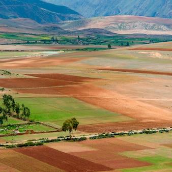 Landwirtschaftliches feld in heiligem tal, cusco-region, peru