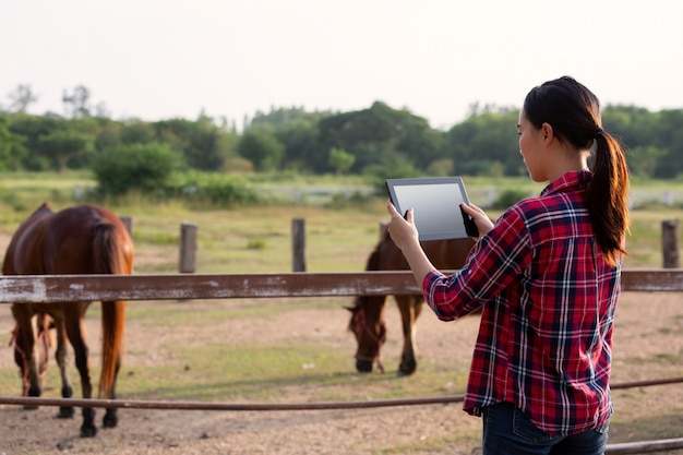 Landwirtschaftsindustrie, die technologie- und tierhaltungskonzept bewirtschaftet - landwirt mit tablette qualität durch modernes technologie konzept der tablettenlandwirtschaft überprüfend.