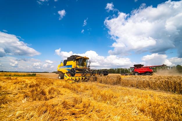 Landwirtschaftsmaschine, die ernte in feldern erntet