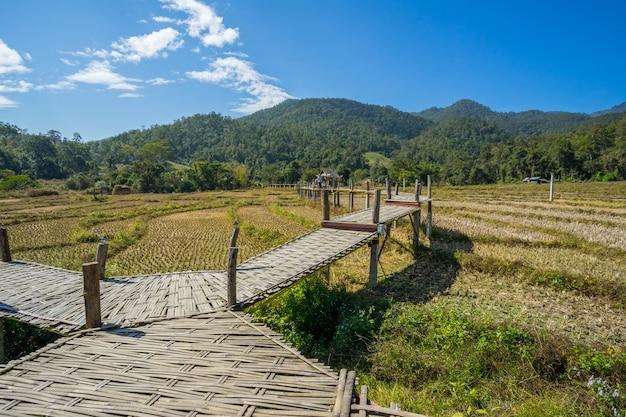 Lange bambusbrücke in pai, thailand
