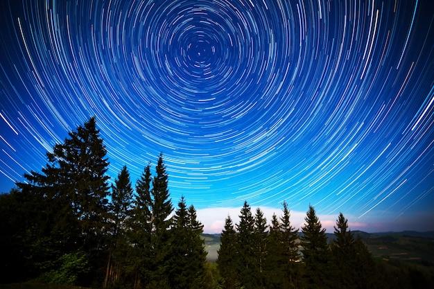 Lange belichtung von strahlend sternenklarem himmel und nadelwald mit hohen bäumen