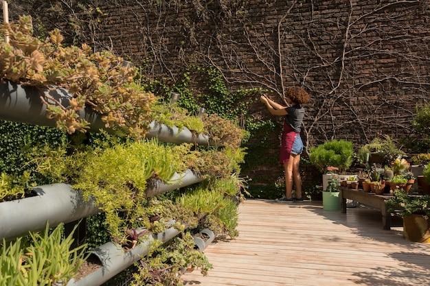 Lange schuss junge frau, die sich um pflanzen kümmert