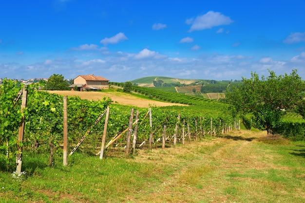 Langhe ist ein hügeliges gebiet in der provinz cuneo im norditalienischen piemont.