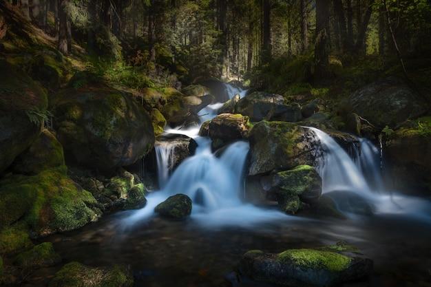 Langzeitbelichtung eines wasserfalls im wald, umgeben von bäumen