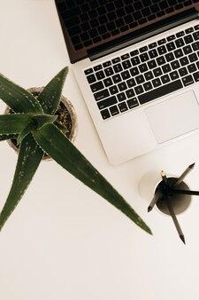 Laptop auf weißem tisch mit aloe-pflanze.