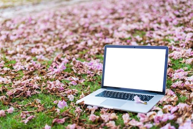 Laptop-computer mit rosa blumen und hintergrund des grünen grases.