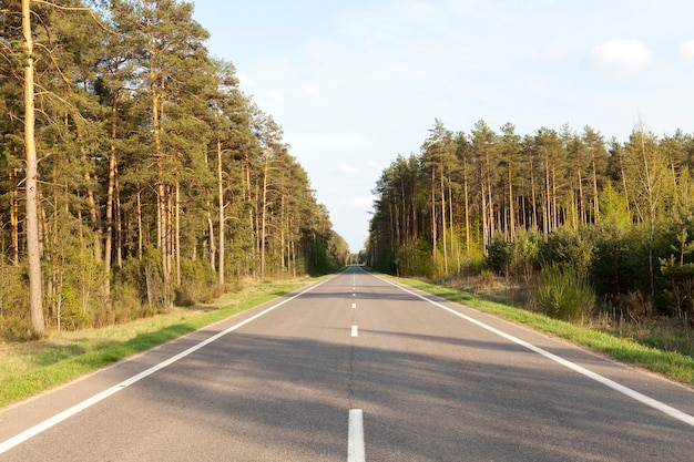 Lassen sie die asphaltstraße auf dem land durch felder und wälder mit grüner vegetation und bäumen führen
