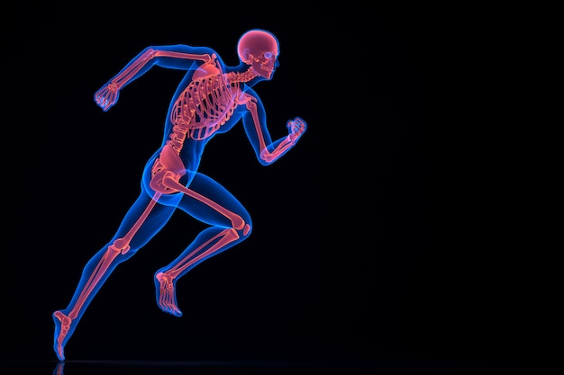 Laufen 3d-skelett. enthält einen beschneidungspfad