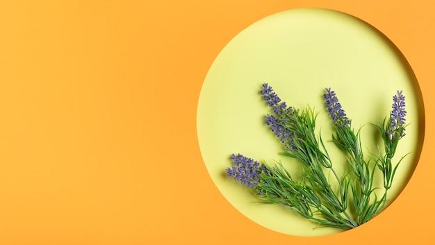 Lavendel im rahmen mit kopienraum
