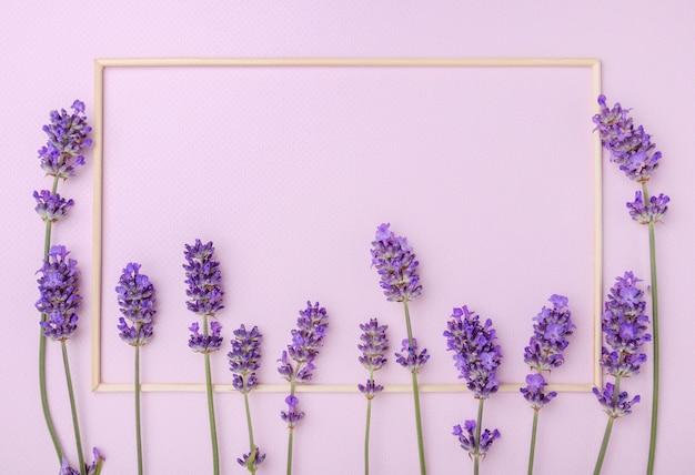 Lavendelblumen auf rosa pastellhintergrund. blumenkomposition mit leerem platz für text. draufsicht.