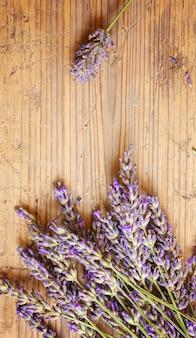 Lavendelöl in einer kleinen flasche. selektiver fokus.