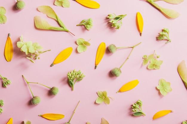 Layout von blütenblättern und pflanzenmuster auf einem blumenthema auf einem rosa