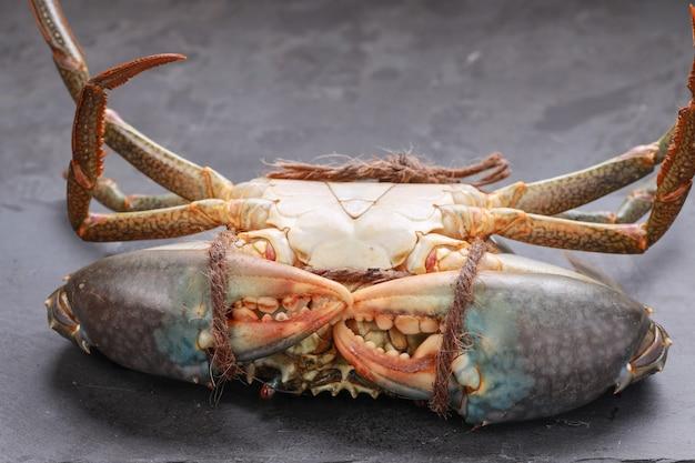 Lebende schlammkrabben, angeordnet auf einer schiefertafel mit kopfüber auf einem grauen strukturierten hintergrund, draufsicht.