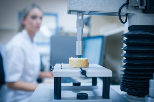 Lebensmittelwissenschaftler, der technologie verwendet, um brot zu analysieren