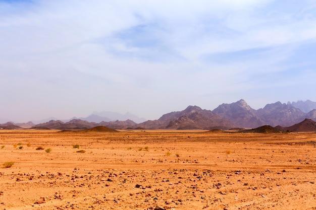 Leblose heiße wüste