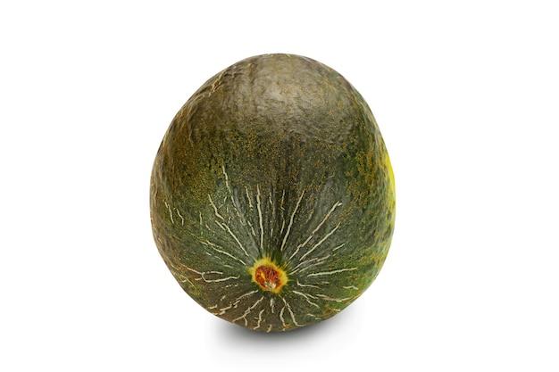 Leckere, grüne, ausgereifte melone auf weißem hintergrund mit kopienraum für text oder bilder. kürbispflanzenfamilie. seitenansicht. nahaufnahme.
