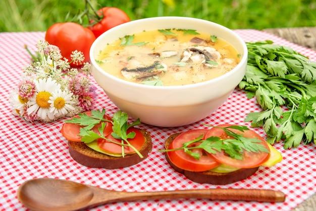 Leckere pilzsuppe mit tomaten.