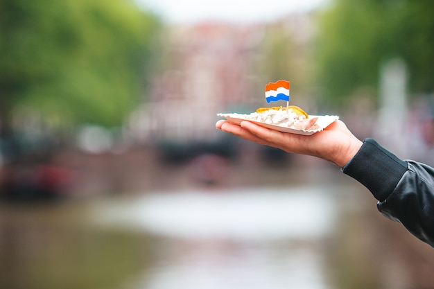 Leckerer frischer hering mit zwiebeln und niederländischer flagge auf dem wasserkanalhintergrund im amsterdamer trad...