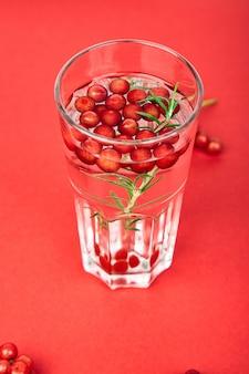 Leckeres kaltes frisches getränk, entgiftungswasser mit schneeballbeere, rosmarin