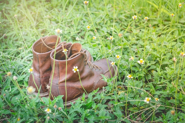 Lederschuhe auf dem grashintergrund