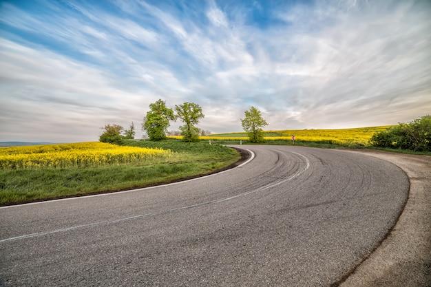Leere asphaltstraße und blumenfeld von gelben blumen