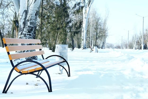 Leere bank im schönen winterpark an einem sonnigen tag
