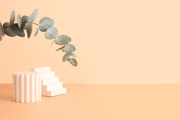 Leere geometrische podien auf dem isometrischen pastellhintergrund. frischer eukalyptuszweig von oben wie ein bogen. gut als modell zum zeigen von kosmetika oder produkten. großes banner.