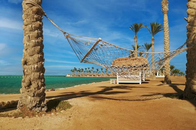 Leere hängematte zwischen palmen am tropischen strand