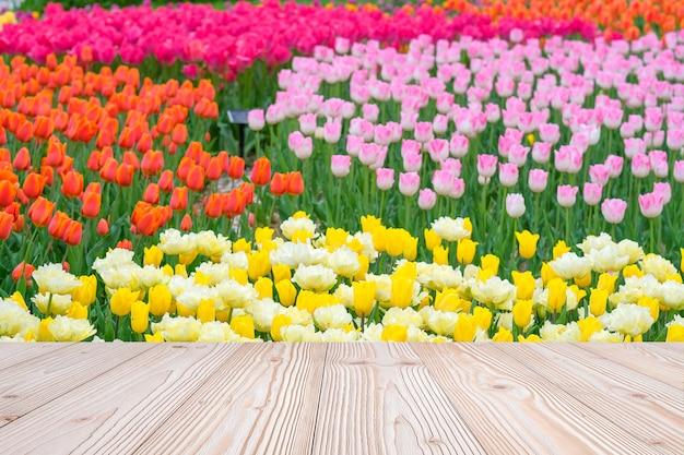Leere hölzerne tabelle mit bunter jahreszeit des tulpenblumenhintergrundes im frühjahr