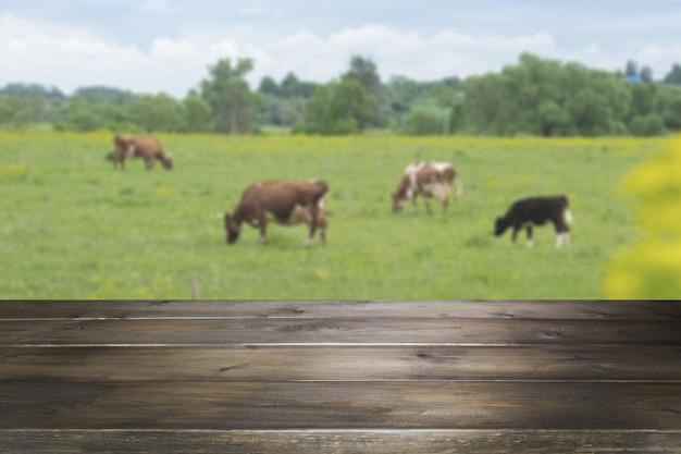 Leere hölzerne tischplatte und unscharfer ländlicher hintergrund von kühen auf grünem feld. anzeige für ihr produkt.