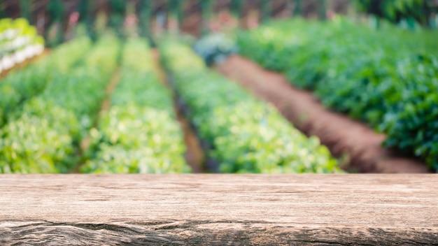 Leere holztischplatte und verschwommener grüner baum und gemüse in landwirtschaftlichen betrieben.