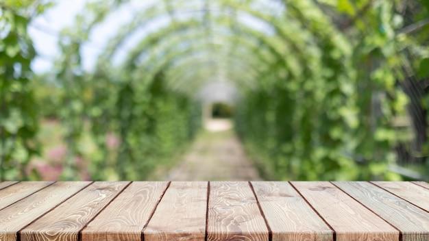 Leere holztischplatte und verschwommener grüner baum und obstgemüse im hintergrund der landwirtschaftlichen betriebe - können für die anzeige oder montage ihrer produkte verwendet werden.
