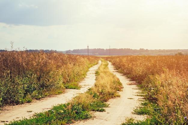 Leere landschaftsstraße durch die felder, die zur horizontlinie führen