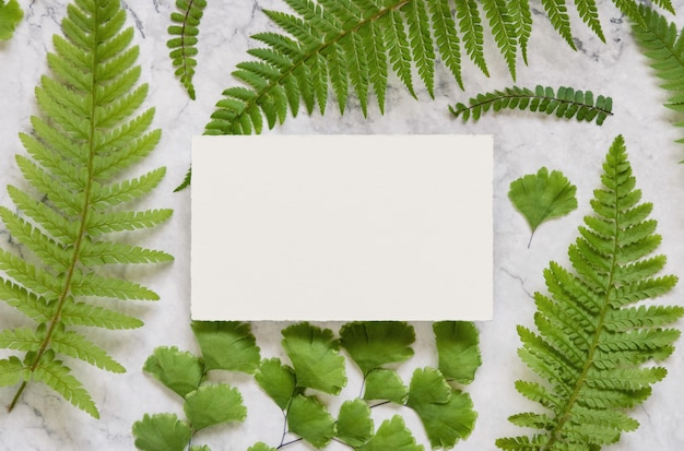 Leere papierkarte mit grünen farnblättern auf weißer marmortischplattenansicht. tropische mock-up-szene mit flacher grußkartenlage